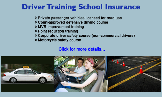 driver training school insurance program